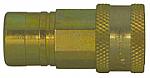 Female Pipe Thread